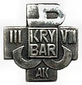 Zgrupowanie AK Krybar.jpg