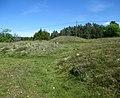Åsa gravfält (RAÄ-nr Ytterselö 123-1) 0395.jpg