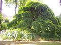Épernay - jardin d'horticulture (05).JPG