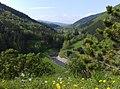 Údolí Mazák - panoramio.jpg