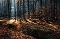 Ősz a Zempléni-hegységben, Fényfürdő.jpg