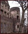 Świny zamek (24) Świny zamek. Foto Barbara Maliszewska.JPG