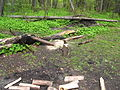 Бивачёк - panoramio.jpg