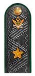 Действительный государственный советник РФ 3 класса ФССП.png