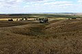 Колки на склонах горы Моховой - panoramio.jpg