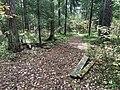 Лесные дорожки к Акуловскому поселку 01.jpg