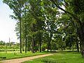 Литовский сад1.jpg