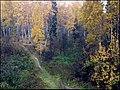 Малиновка - panoramio (2).jpg