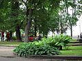 Михайловский сквер - panoramio (2).jpg