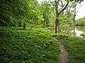 "Парк ""Пивний ліс"".jpg"