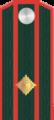 Подполковник РОА.png