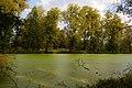 Пруд в парке усадьбы Яндоурова в селе Ракоболь, Ярославская обл.jpg