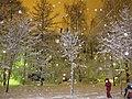 Пушкин, Царское Село, София, Рождество 2011 - panoramio - OLEG PERLIN.jpg