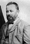 Светомир Николајевић