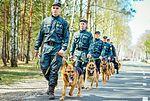 Собаки НГУ 4556 (19348641342).jpg