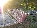 Сушење на печурки во село Косово 3792.jpg