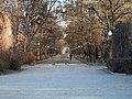 Центральна алея парку им.Горького м.Мелітополь.jpg