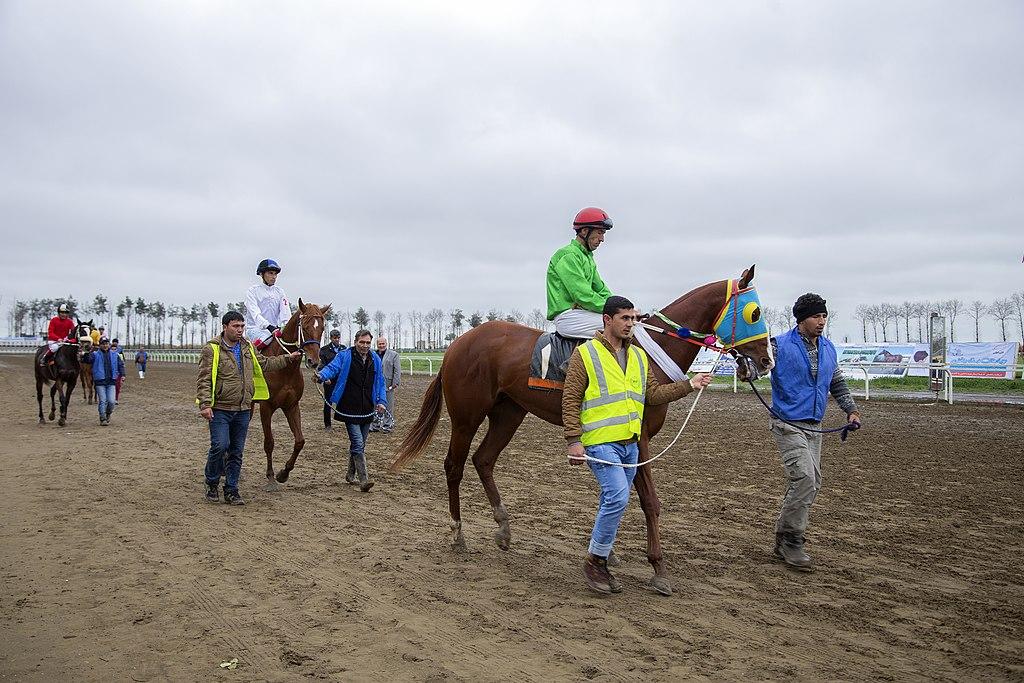 Картинки по запросу Race distance: Horses