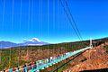 三島スカイウォーク - panoramio (2).jpg