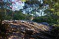 八畳岩 - panoramio.jpg