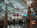 南京机场 - panoramio - 陈宏宇 (4).jpg