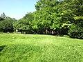 小柳公園 - panoramio (2).jpg