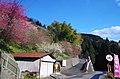 広橋梅林 乳屋辻バス停付近 Chichiya-tsuji bus stop 2014.3.22 - panoramio.jpg
