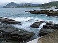 潮境公園 Ecological Restoration Park - panoramio (1).jpg