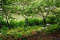 麗池 Li Pond - panoramio.jpg