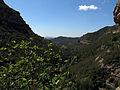 107 La vall del Tenes des de la cova de Sant Miquel del Fai.JPG