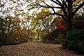 171125 Kobe Municipal Forest Botanical Garden13s3.jpg