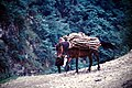 1972 RUGOVO SCHLUCHT - panoramio - jean melis (4).jpg
