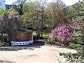 2004-04-16-bonn-stadtgarten-01.jpg