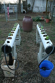 2009-03-07 Rix Dobbs' NFT hydro set-up