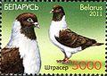 2011. Stamp of Belarus 37-2011-11-16-m1.jpg