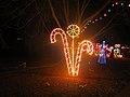 2014 Rotary Christmas Lights - panoramio (9).jpg