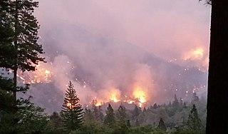 Helena Fire