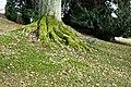 2018-03-04 LSG Park Villa Hügel, Essen, NRW 09.jpg