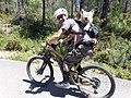 2020-06-20 Gos transportat en una motxilla a l'esquena del ciclista.jpg
