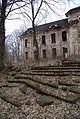 4840viki Pałac w Brzezince. Foto Barbara Maliszewska.jpg