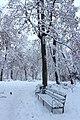80-391-5001 Ботанічний сад акад. Фоміна.jpg