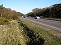 A31(T) dual carriageway, Bratley Plain, New Forest - geograph.org.uk - 330777.jpg