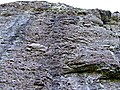A Geological feature - geograph.org.uk - 208024.jpg