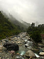 A boulder shaped of Frog in a flowing river in between Bhowali to Ranikhet, Uttarakhand, India.jpg