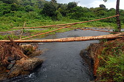 A makeshift bamboo bridge, Tulay.jpg