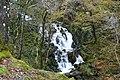 A waterfall on the Nant Cadair - geograph.org.uk - 1570548.jpg