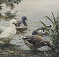 Abbott Fuller Graves - The Duck Pond.jpg
