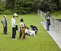 Africa Day 2010 - Iveagh Gardens (4613679389).jpg