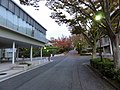 Aichi Institute of Technology - panoramio (4).jpg