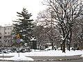 Akademicka Warsaw Winter.jpg